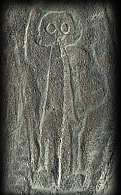 Buho, The Owl Dinastia's Captain