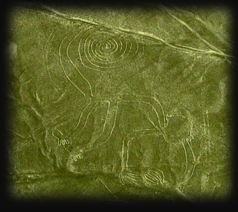 Mono , The Monkey Dinastia's Sergeant